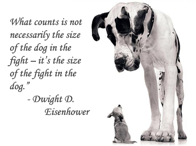The Size Of The Fight In The Dog Dwight D. Eisenhower